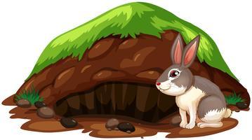 Ein nettes Kaninchen, das ein Loch verlässt