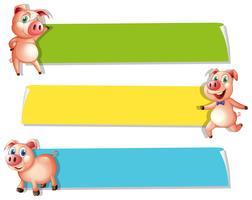 Tre striscioni con maiali carini