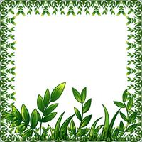 Green plants frame with decorative ornament