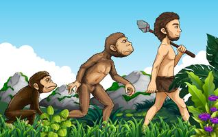Human evolution in nature background vector