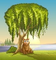 Um urso sob uma grande árvore
