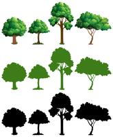 Set van boom ontwerp