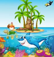 Oceaan leeft