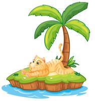 Lata katt på den isolerade ön
