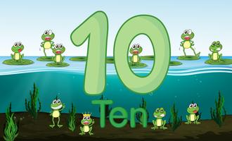 Ten frog at the pond