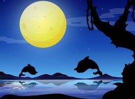 Cena de fundo silhueta com golfinho à noite