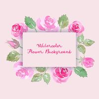 aquarelle fond de fleur rose