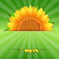 Summer sunflower poster template