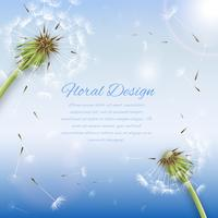 White dandelion with pollens background vector