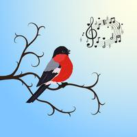 Singing bullfinch bird on a tree branch
