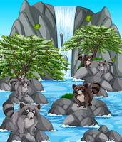 Waterfall scene with many raccoons