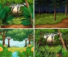 Four forest scenes at day and night
