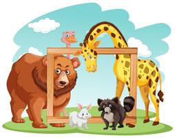 Wooden frame with many animals