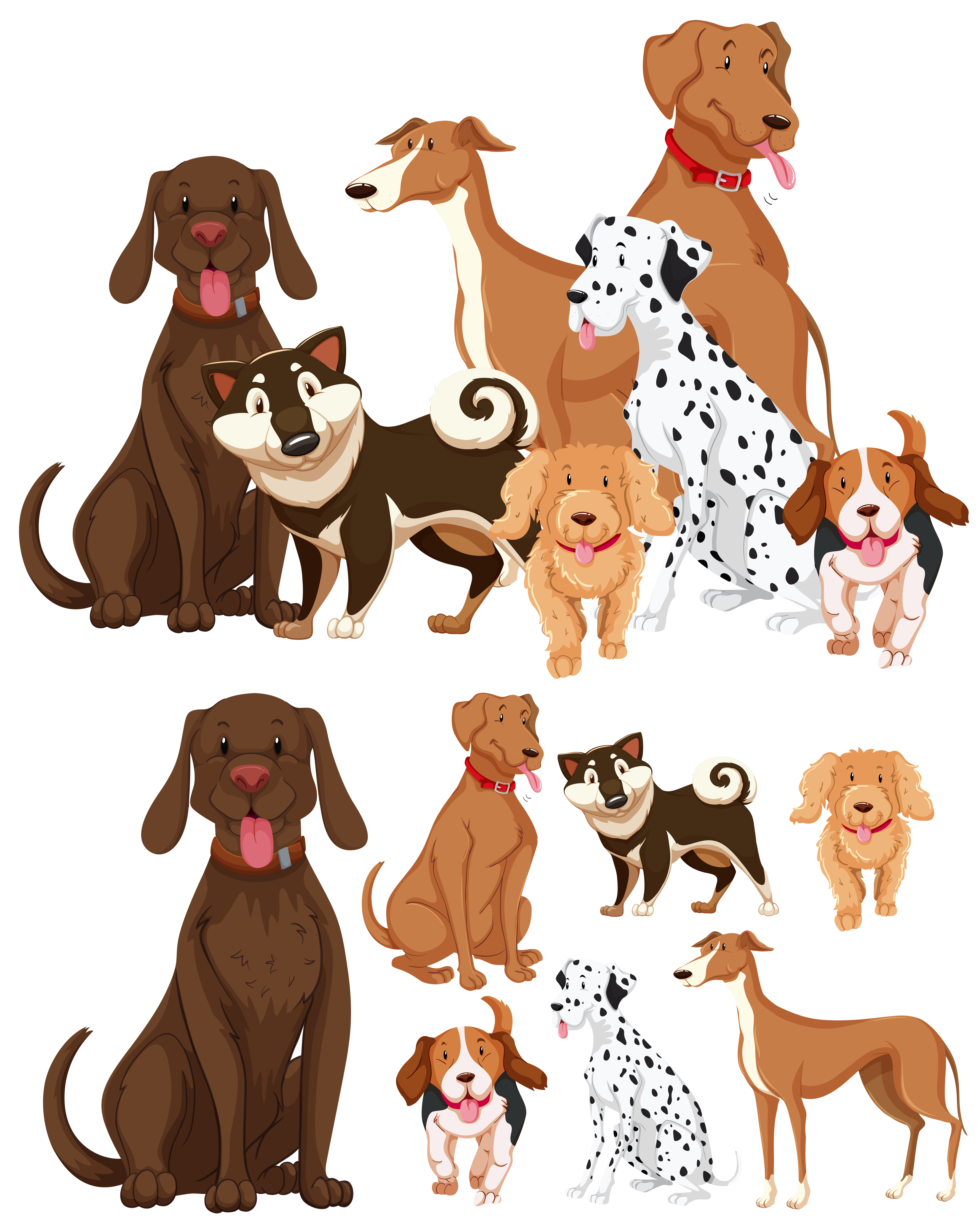 Many Types Of Dogs Download Free Vectors Clipart Graphics Vector Art