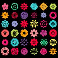 Las flores vector