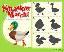 Sombra jogo de correspondência com pato