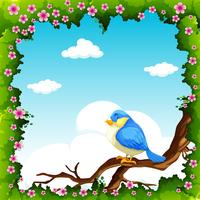 Blue bird on the branch vector