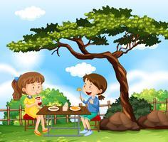 Två tjejer som har picknick i parken