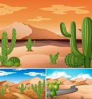 Tres escenas con plantas de cactus a lo largo del camino.