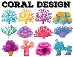 Different kind of coral design