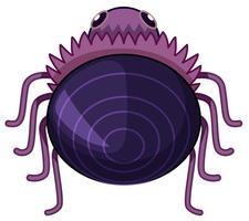 Purple spider on white background