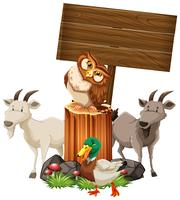 Animals by the wooden sign