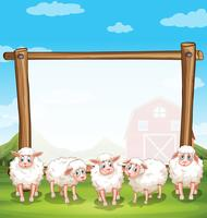 Wooden frame with sheeps in the farm