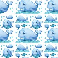 Baleine sans couture