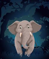 Lindo elefante en el bosque por la noche