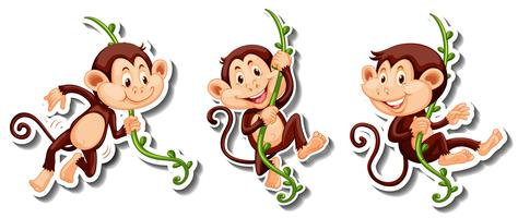 Stickers of monkeys hanging on vine vector
