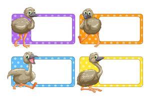 Diseño de etiquetas con avestruces bebé. vector
