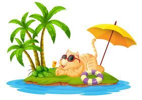 Een kat op zomervakantie
