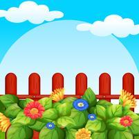 Bakgrundsscen med blommor i trädgården