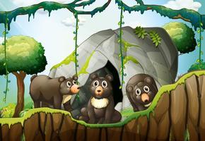 Tres osos pequeños junto a la cueva.