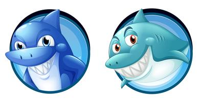 Wild sharks on round badges