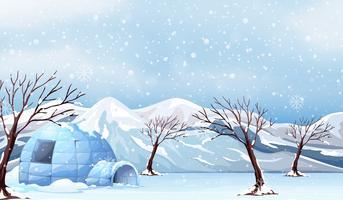 Uma paisagem de inverno branco