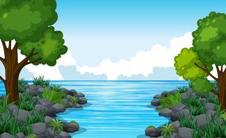Aardscène van rivier met vele bomen