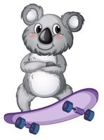 A koala playing skateboard