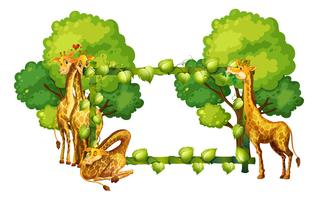 Giraffe on nature frame vector