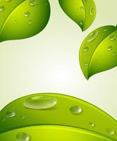 bli grön