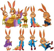 Bunny in different actions