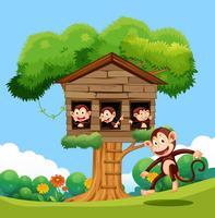 Mono jugando en la casa del arbol