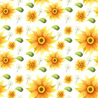 Sunflower on seamless background