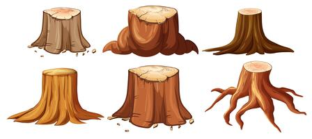 A Set of Different Stump