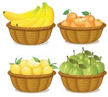 En uppsättning frukt i korg