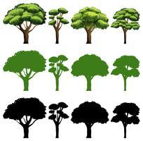 Ensemble de conception différente des arbres