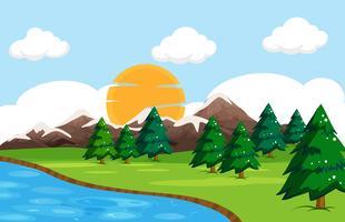 Un paisaje de naturaleza simple.