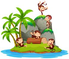Monkey on isolated island