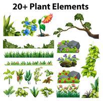 Diversi tipi di fiori e alberi