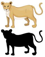 Set of female lion character vector